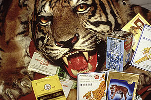 Chinese medicines containing tiger and rhino parts confiscated by the USFWS at Los Angeles Airport.