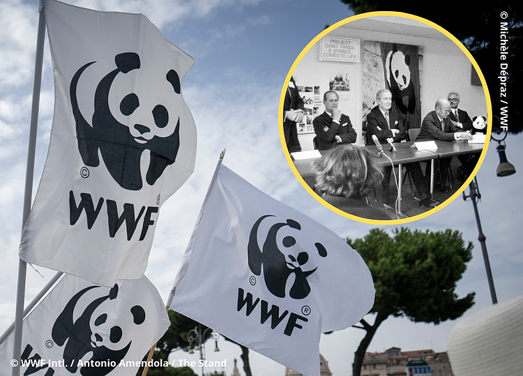 WWF celebrates 60 years of action for people and nature