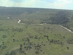 The Mara River flowing from its source, the South West Mau Forests in Kenya.