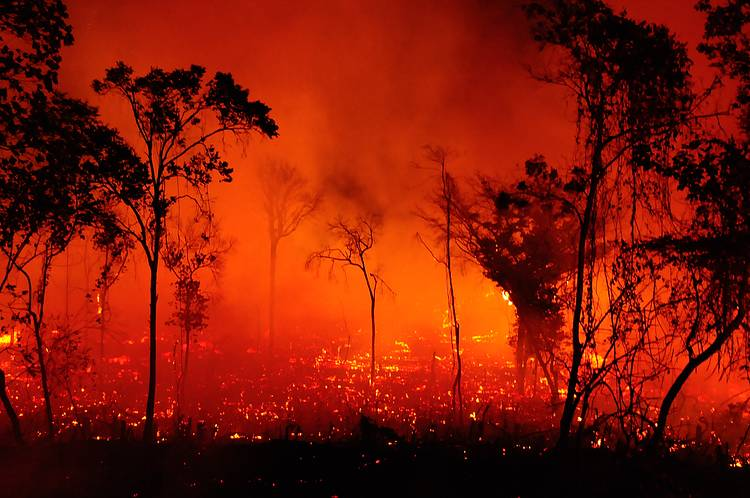 Brazil in flames: Pantanal sets record fires while the government denies the evidences