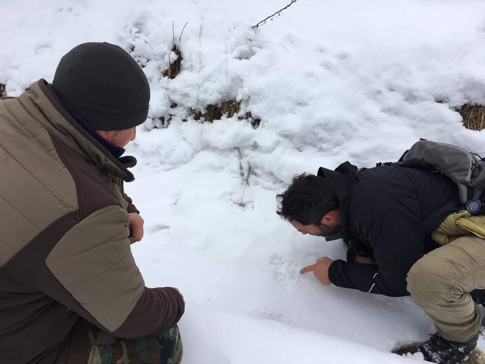 citizen science acitvity with hunters in Romania