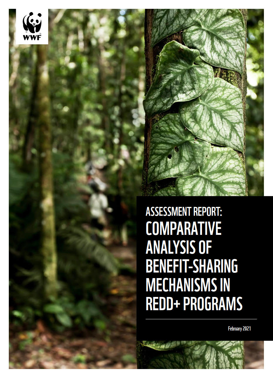 Assessment Report: Comparative Analysis of Benefit-Sharing Mechanisms in REDD+ Programs cover page