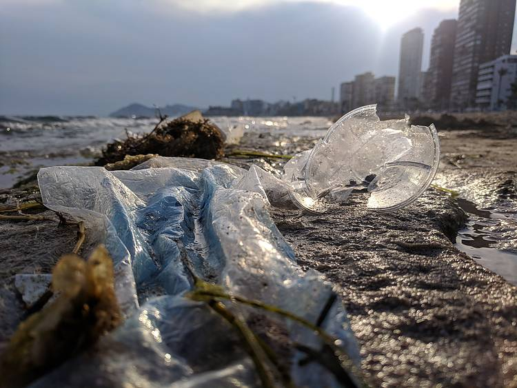 CITIES TAKE LEAD IN THE FIGHT AGAINST PLASTIC - WORLD CITIES DAY 2020
