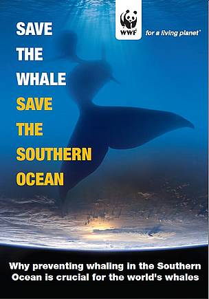 Save the Whale, Save the Southern Ocean