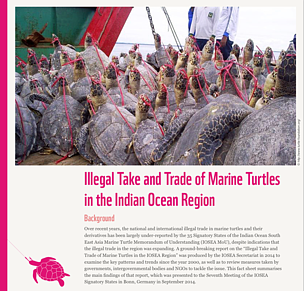 Summary of findings of 'Illegal take and trade in marine turtles in the Indian Ocean region'