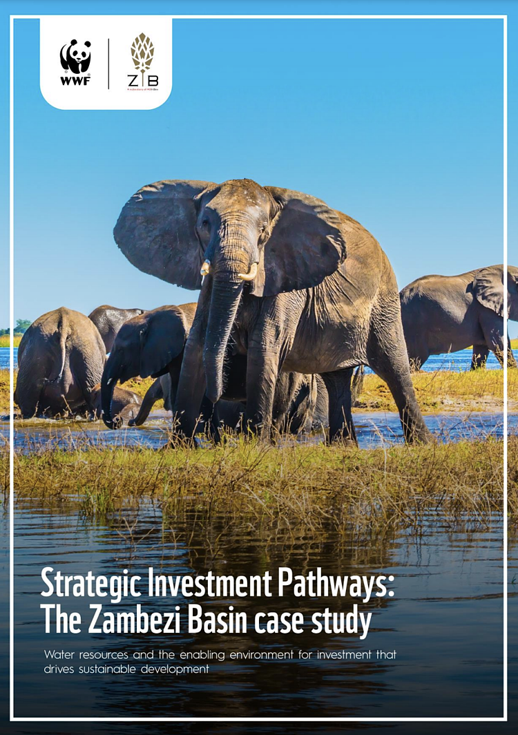 Investment In Water Resources In Zambia Can Deliver Strong Financial Returns