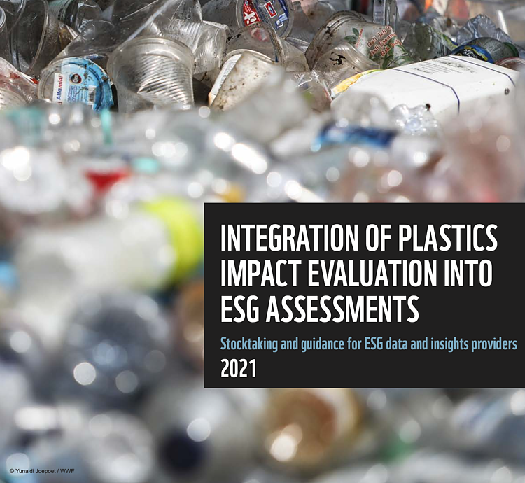 New report sets standard for assessing plastic impacts of business