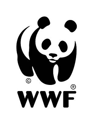 WWF Adria is hiring an expert on education in Bosnia and Herzegovina   WWF