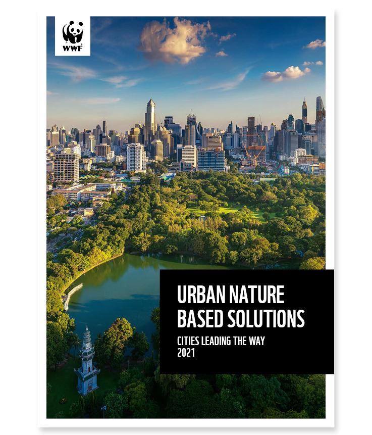 Des solutions fondées sur la nature en milieu urbain : les villes montrent la voie