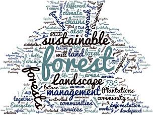Word cloud generated from WWF solutions postcards,