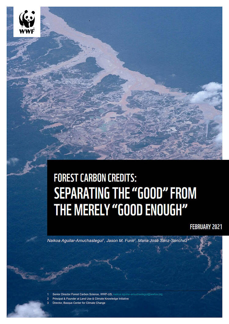 "Forest Carbon Credits: Separating the ""good"" from the merely ""good enough"""