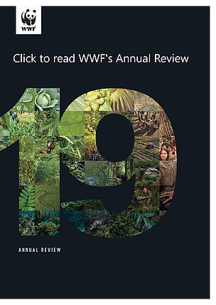 WWF Annual Review 2019
